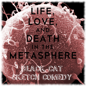 Life, Love, and Death in the Metasphere